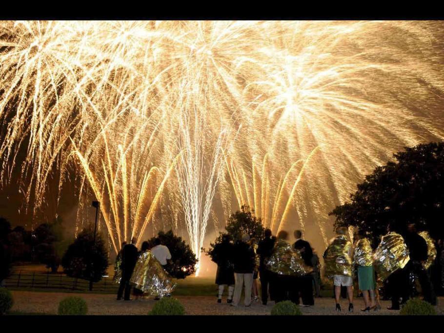 Фото - Свадебный фейерверк от Didzher Effects