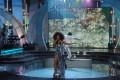 Фото - Водный экран от Didzher Effects